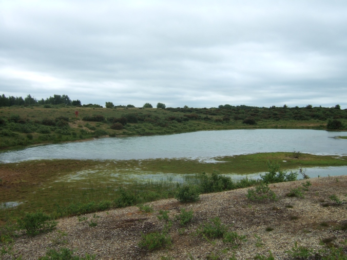 A gravel pit pond.