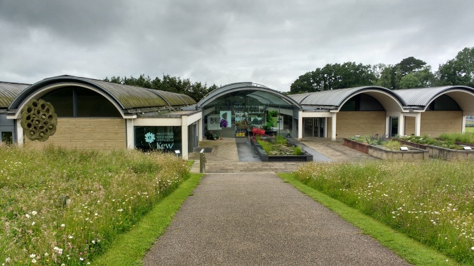 The Millennium Seed Bank building, created to look like the Sea Bean, one of my favourite plants, and like the seeds they keep underground, capable of lasting years without germinating.